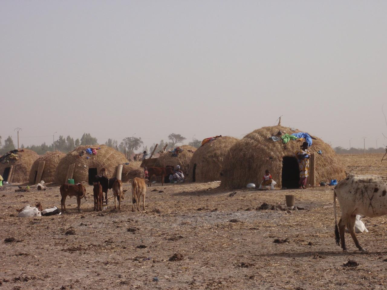 248_Mopti  The Fulani Tribe  Setting-Up The Hut  Part 5