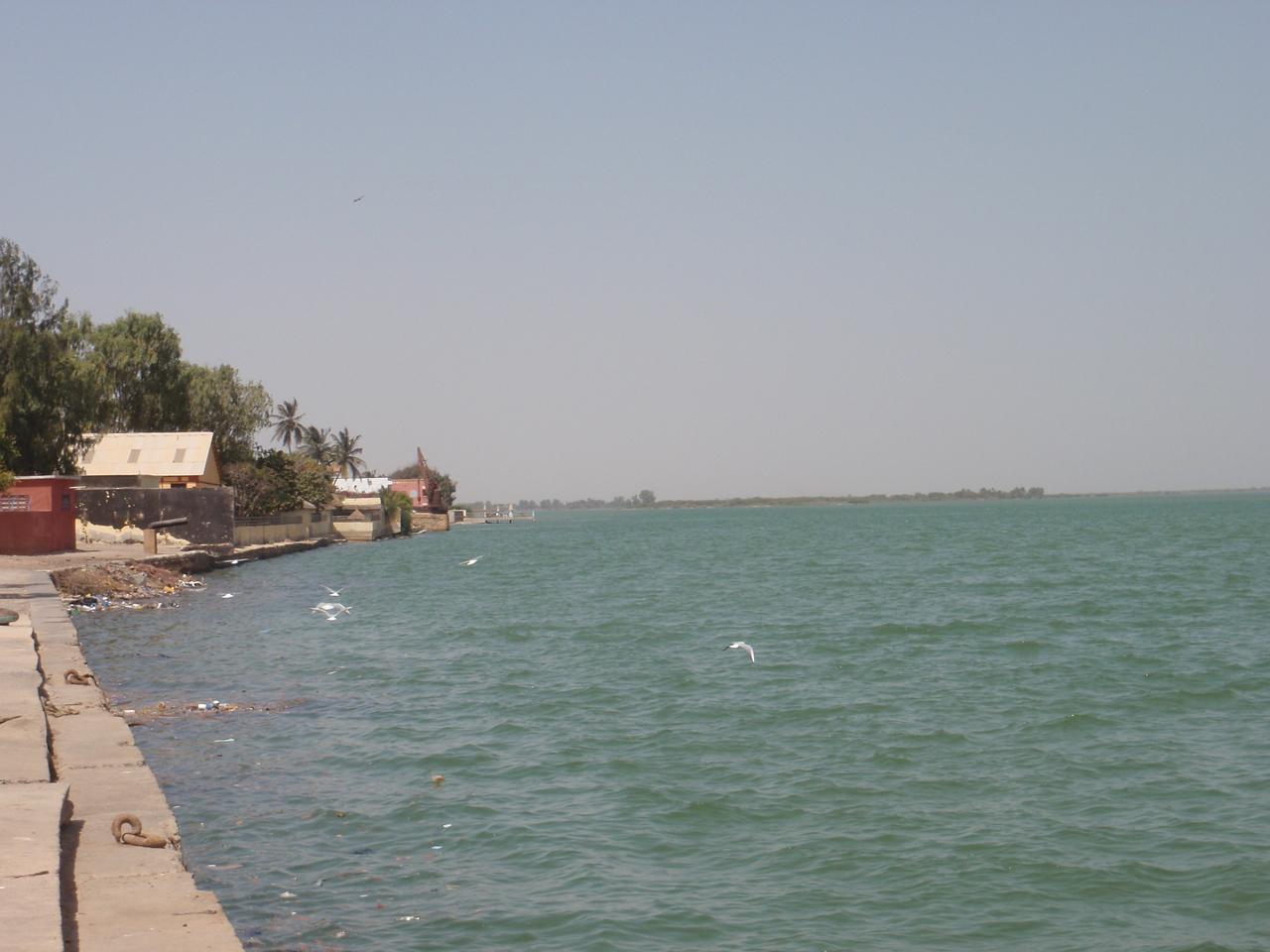 085_Senegal River  Border of Mauritania is a few km away