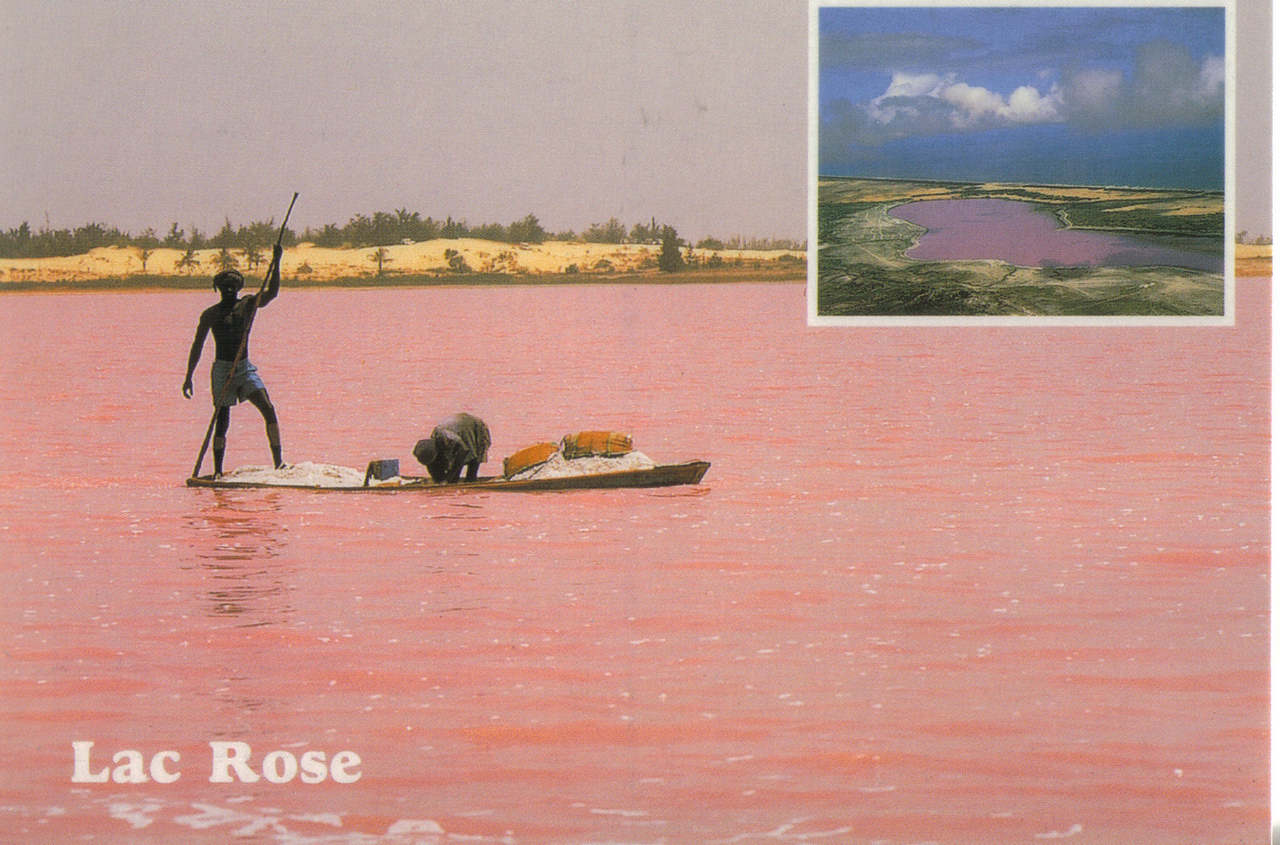 072_Rose Lake  Caused by water's high salt content, 10 times usual