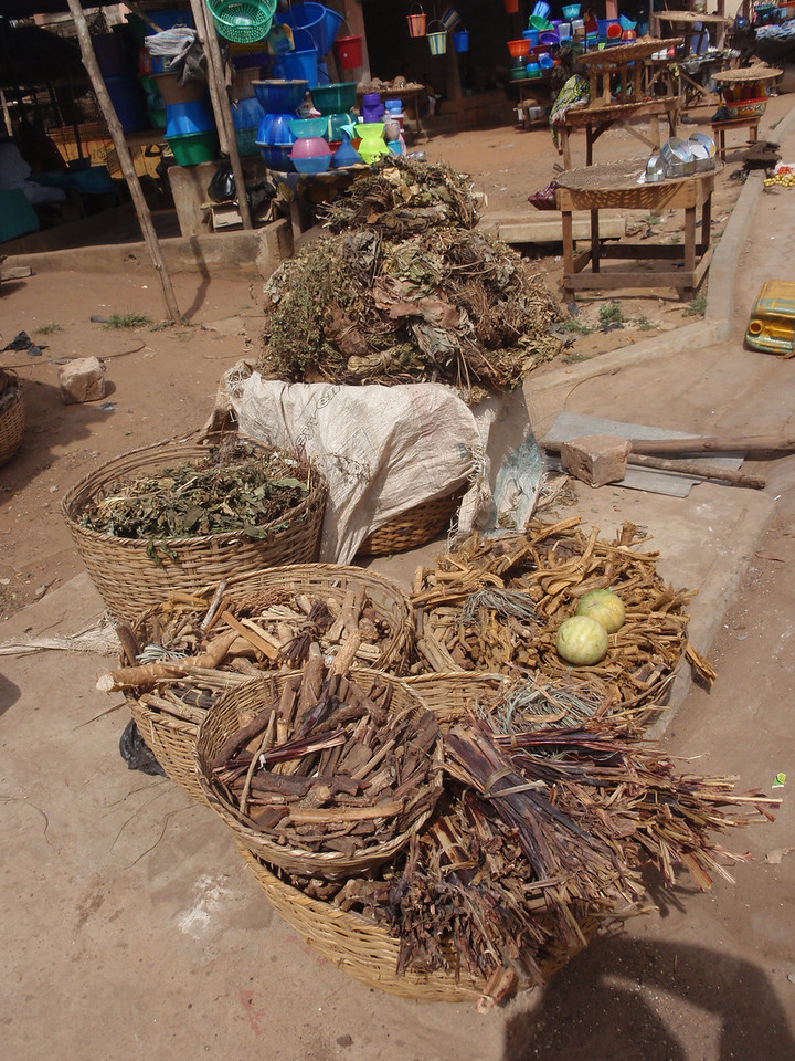 134_Abomey-Calavi Fetish Market  Raw Materials for Intervention