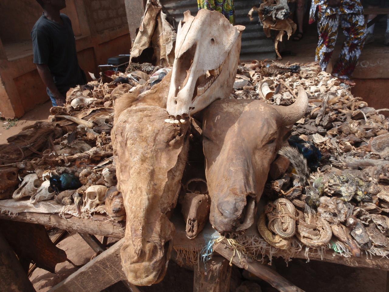 135_Abomey-Calavi Fetish Market  Raw Materials for Intervention