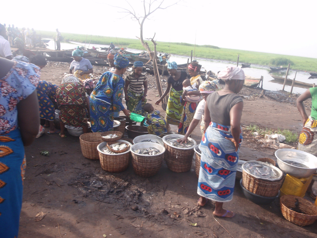 076_Ganvie Lake Community  Lake Nokoue  The Fish Market