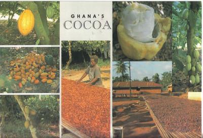 008_Ghana's Cocoa