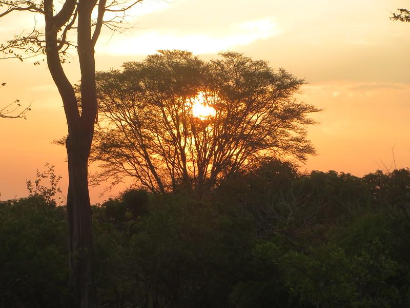 022_Liwonde National Park  Mvuu Camp  Central African Wilderness Safaris