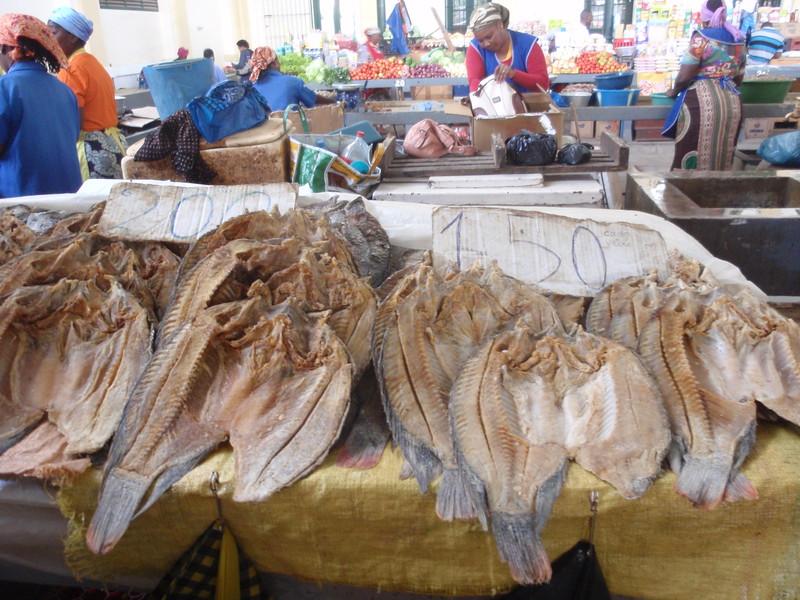 017_Maputo  Municipal Market  1901
