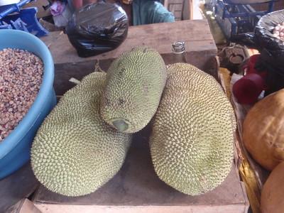 014_Maputo  Municipal Market  1901