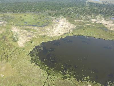 015_Okavango Delta  A Lush Wonderland