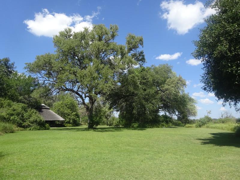 019_Okavango Delta, Moremi Game Reserve  Small exclusive, top-quality lodge
