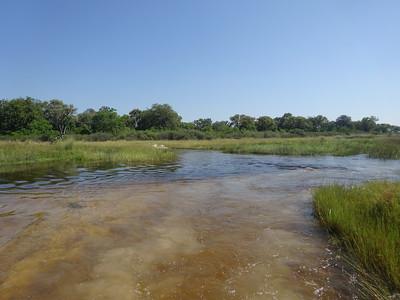 100_Okavango Delta, Moremi Game Reserve  4WD Safari