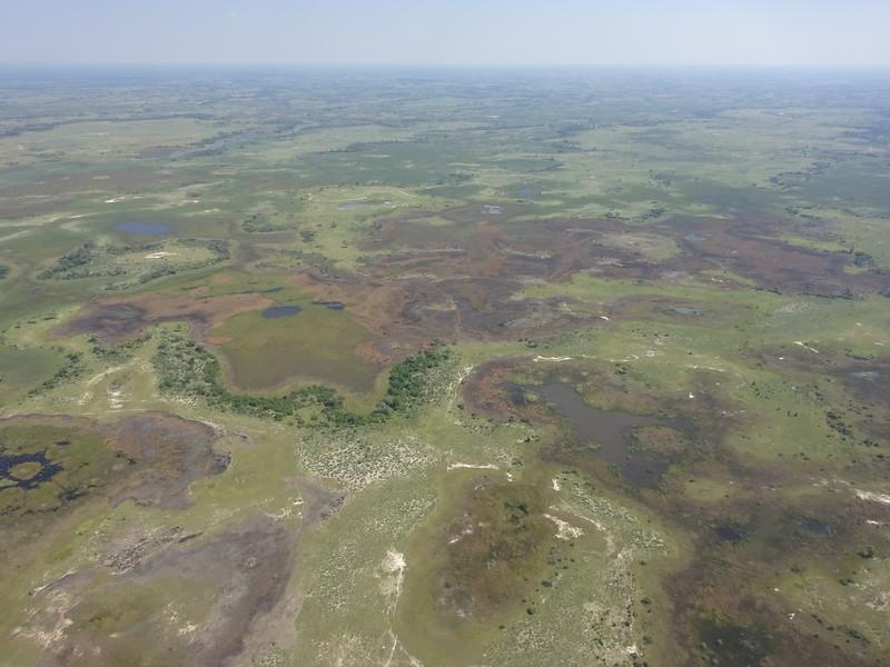 007_Okavango Delta  A vast wetland and swirl of green flexes