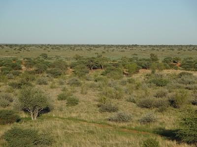 043_Gondwana Kalahari Park  Sunrise