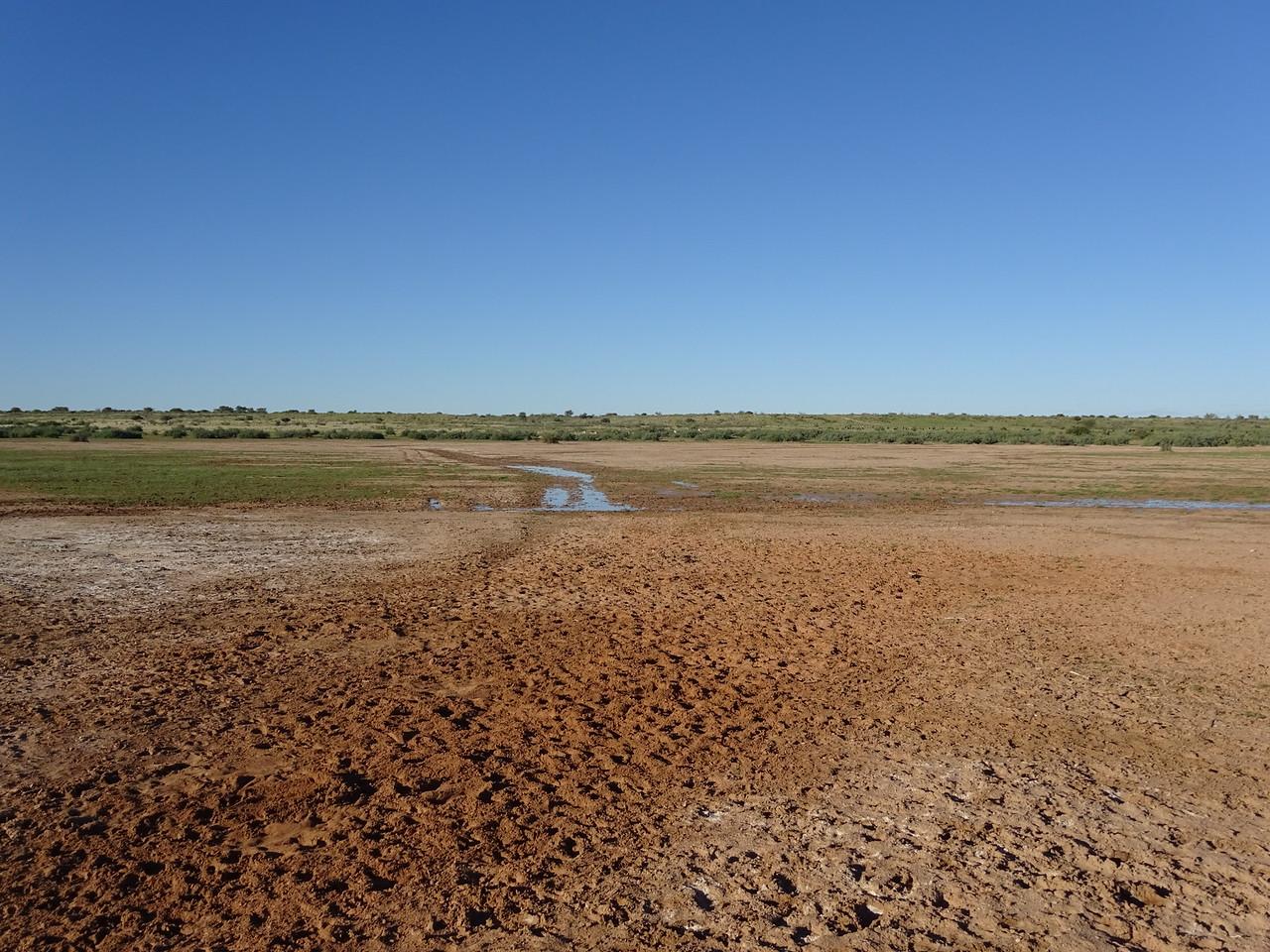 030_Gondwana Kalahari Park