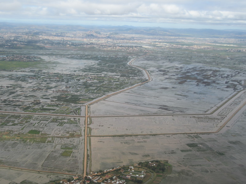 006_Madagascar  Pays agricole  La terre occupe 8 Malgaches sur 10  Rice paddies