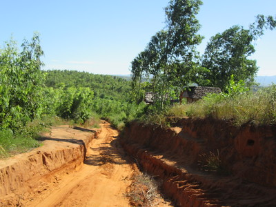145_La piste de latérite fait une saillie rouge dans le vert des arbres