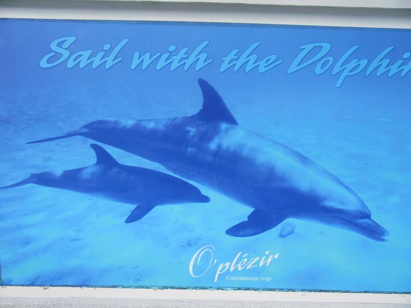 028_The West Coast  Sail the Dolphin Coast  O'Plézir Catamaran Trip