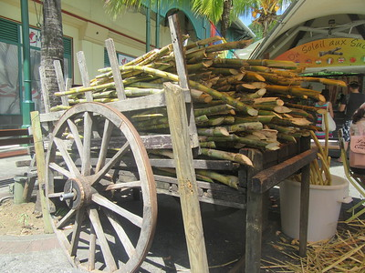 016_100% usable materials  Molasse (make rhum)  Fiber (burn, generate electricity to sugar mill)