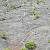 071_Le Piton de la Fournaise  L'Enclos du Volcan  Altitude 2215m