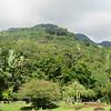 048_Mahé Island  Victoria  Botanical Gardens  6 hectares de sérénité  1901