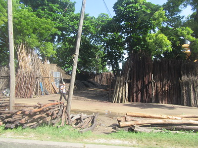 282_Zanzibar Island  Outside Zanzibar Town