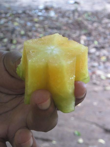 348_Carambola, Starfruit (1 of 3)  Use for Juice, Decorate Salad