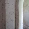300_Mahurubi Palace  Bath Complex  The Thickness of the wall, keep air fresh