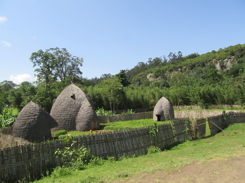 610_Dorze Village  Beehive-shaped bamboo huts  Look like Elephant Head  12m high and last 100 years