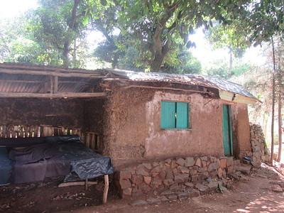 389_Bahir Dar  Lake Tana  Zeghie Peninsula  Ura Port  Houses are made of Straws and Mud