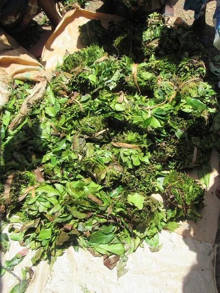 591_Arba Minch  Market  Coffee Leaves