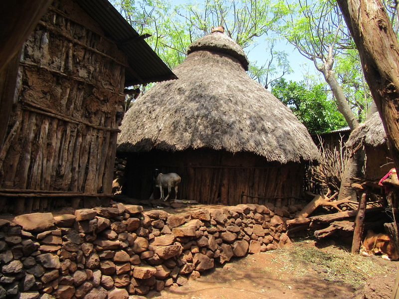 674_Konso Cultural Landscape  UNESCO  Mechelo Walled Village  Exoganos, cannot marry within clan