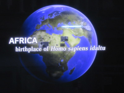 478_Addis Ababa  National Museum of Ethiopia  Human Evolution  Homo Sapiens Idaltu