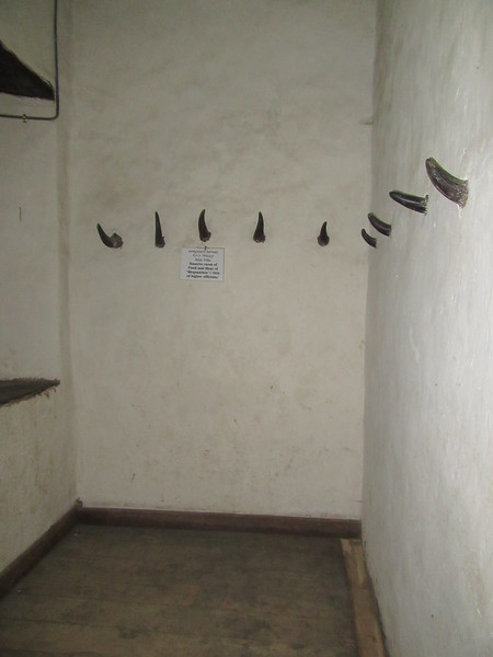 452_Assembly and Banquet Hall Building  Reserve room of Food and meat of Mequanints, Title of higher officials