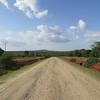 731_Unpaved road in the Savana