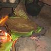 647_Dorze Village  The Enset  The False Banana Tree  cooking the Paste, over a Banana leaf