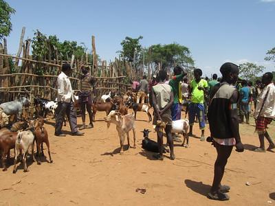 840_Key Afer  Livestock Market