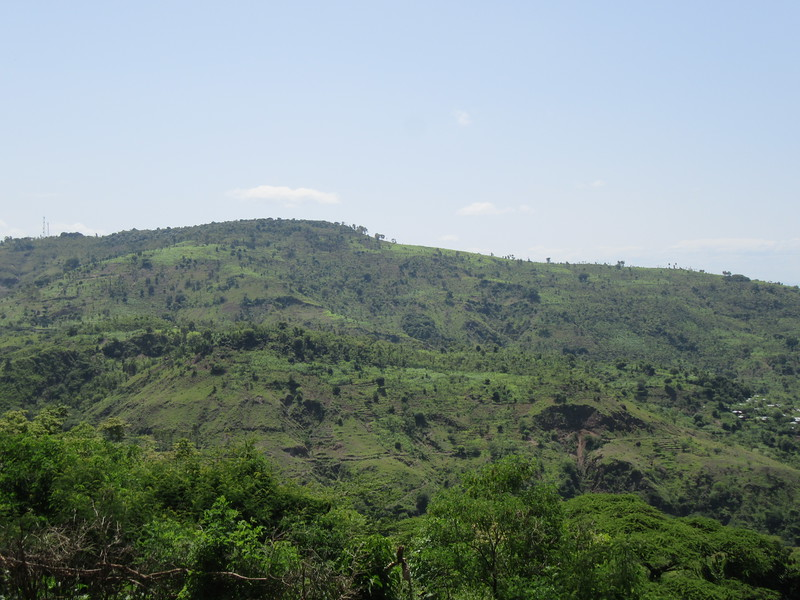 659_The Konso Waka  Hills are covered by neat and densely planted terraces with their elaborate drainage systems