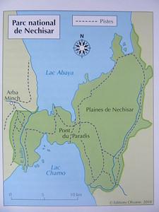 593_Parc National Nechisar  Lake Abaya  Slighty acidic lake  Small fishes  Lake Chamo, Big Fishes