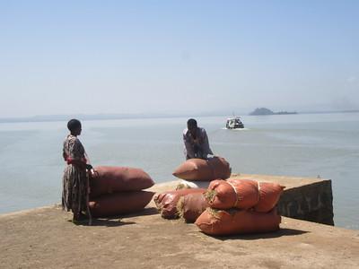 387_Bahir Dar  Lake Tana  Zeghie Peninsula  Ura Port  Selling grass in the main city