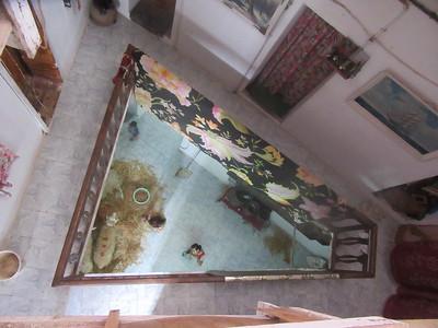 028_Alger  La Casbah  Maison de 3-4 familles  Animaux au 1er étage