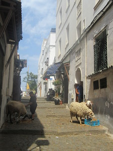 023_Alger  La Casbah  UNESCO