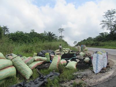 012_En route  Entre Abidjan et Aniassué  Déforestation  Charbons de Bois