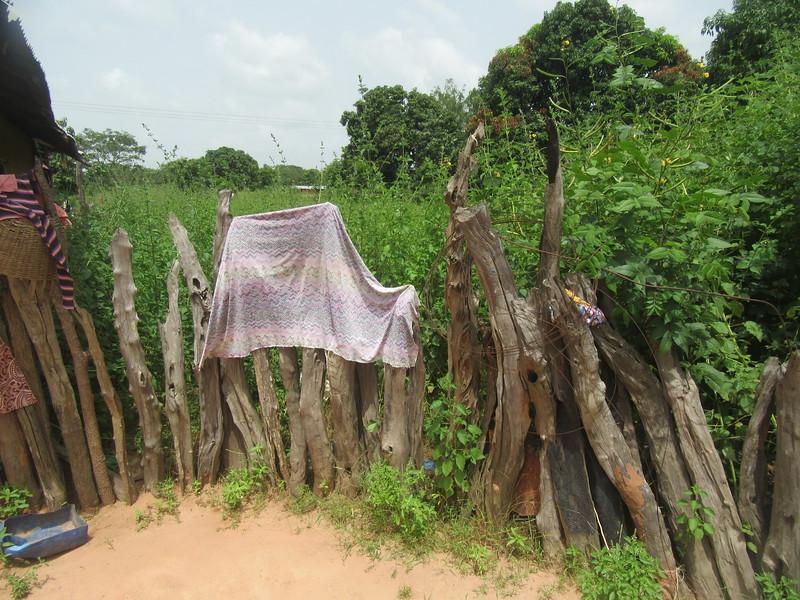 015_Casamance  Maison typique (en banco)  7 de 21  Le Bois de Fer  Ne vas pas pourrir