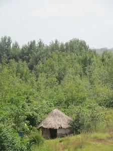 028_Le Littoral  La Rivière Fatala