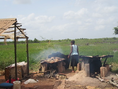 014_Guinea-Bissau  The Cacheu Region  Roadside Fishmarket  Smoking (drying the fishes)