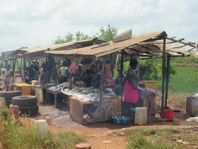 013_Guinea-Bissau  The Cacheu Region  Roadside Fishmarket