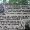 122_Tacugama Chimp Sanctuary