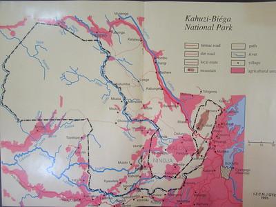 031_Parc National de Kahuzi-Biega