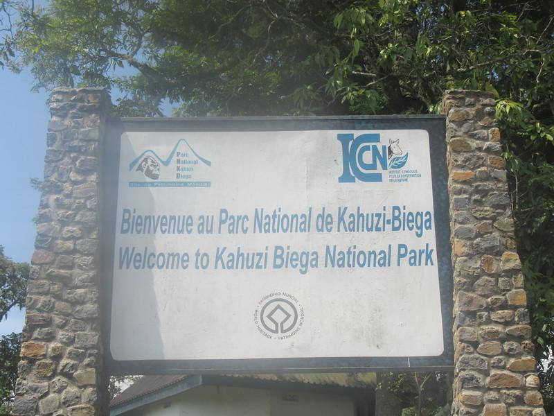 026_Parc National de Kahuzi-Biega