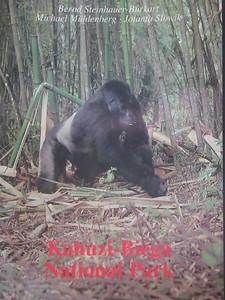 027_Parc National de Kahuzi-Biega (1)