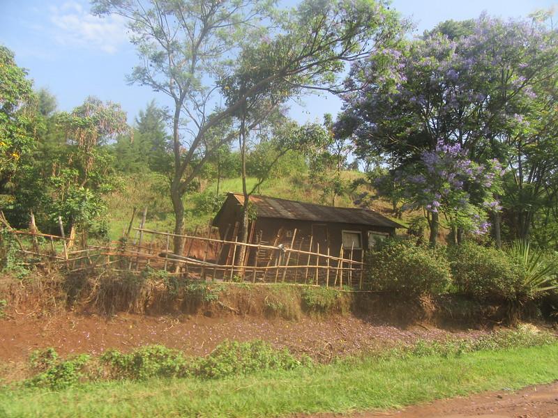 020_Route entre Bukavu et Le Parc National de Kahuzi-Biega