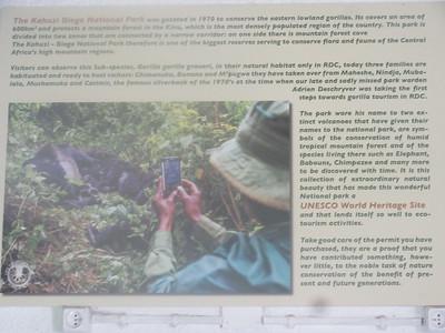 029_Parc National de Kahuzi-Biega (3)